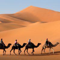 Dormir en bivouac dans le désert
