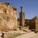 Les ruines du Chellah à Rabat